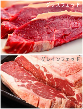 オーストラリア(豪州)産牛肉(オージービーフ)